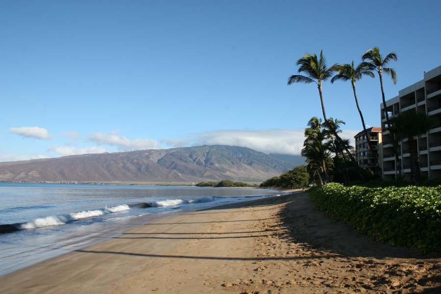 Sugar Beach Resort Maui Condo Vacation Rentals