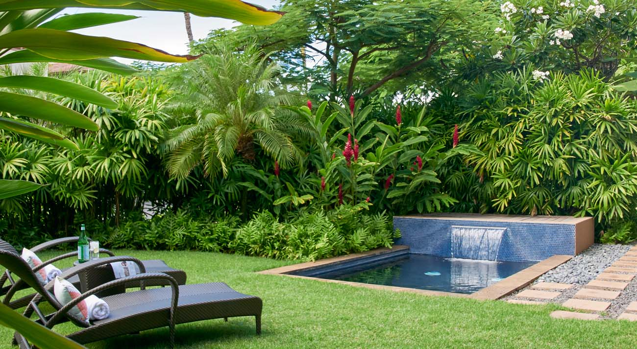 Private lawn and plunge pool